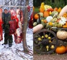 Статья Фролова Ю.А. от 10.01.15. —«Уважаемые мясоеды, как хотите, так с этим теперь и живите! Или идиотов не сеют, ни пашут, а ответить им необходимо!».