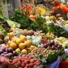 Запись эфира на Народном радио Славянский МИР с участием Фролова Ю. А. по теме «Культура возделывания земли для перехода к продовольственной независимости»