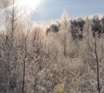 Приглашение на ретрит с 2 по 8 января 2017 года в экопоселение Картошино (Тверская обл). Обязательно посмотрите видео приглашение.