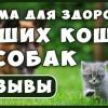 Лучший КОРМ для Кошек и Собак. Корм для Здоровья! Излечение питанием! Интервью и отзывы !!!