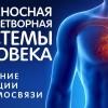 КРОВЬ. Кровеносная и кроветворная системы организма — самое главное кратко! Знай и ЖИВИ!