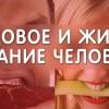 Видовое питание человека. 9 причин болезней, ч.2. Еда и Жизнь. Фролов Ю.А.