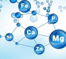 Неорганическая биохимия