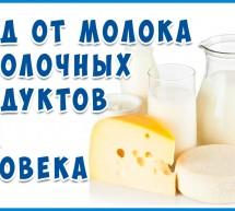 Молочное безумие: Кальций и Казеин, Вера и Дурь! Статья Фролова о Молоке №1.