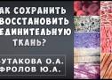 Соединительная ткань — Связки, хрящи, суставы, кожа. Бутакова О.А. и Фролов Ю.А.