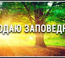 Продаю заповедник в Псковской области.