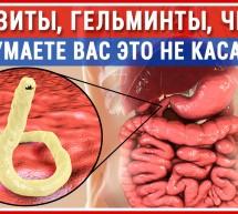 ПАРАЗИТЫ. Глисты есть у Всех! Как избавиться от паразитов? Опасность! Заражение. Защита. Лечение!