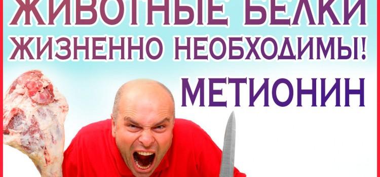МЯСО нужно есть! Желудок — орган для мяса! Люди — это животные, значит должны есть мясо! Метионин.