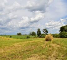 Просьба-предложение. Участок 18 га, 35 км от Минска.