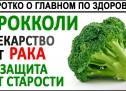БРОККОЛИ. Как правильно готовить брокколи, что бы получить всю пользу? Проростки и микрозелень!