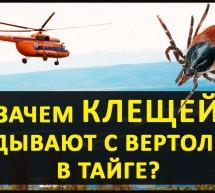 Энцефалитных Клещей скидывают с вертолётов! Кто и зачем устраивает диверсии? И не только это! Ужас.