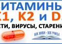 Витамины К1, К2 и D3 — защита от старения, вирусов, повреждений клеток, ДНК, митохондрий, АТФ!