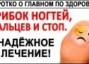 ГРИБОК НОГТЕЙ. 100%-е избавление от грибка ногтей, стоп, ног! Простой метод ДЛЯ ВСЕХ!