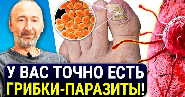 Грибки в организме вызывают РАК! Мощные средства и методики лечения от всех ГРИБКОВ — паразитов!