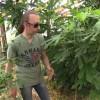 Неопубликованные ранее ролики Фролова Ю. А. по органическому земледелию. Зимний сад, перцы, томаты. Пасынкование, ошибки и т.д.