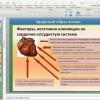 Вебинар Фролова Ю. А. на тему: «Кровеносная и кроветворная система организма. Болезни, методики, лечение.»