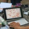 Гемосканирование и сыроедение. Результаты 84-х человек. Качество крови. Паразиты и Сыроеды.
