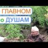 Голубика 2. Беседа Фролова Ю.А. с Юрием Даниловичем — хозяином питомника.