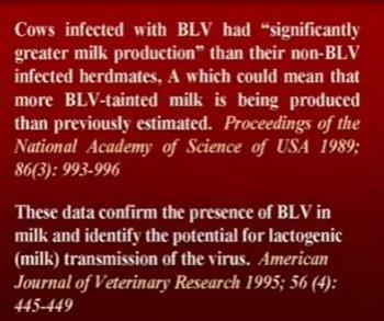 О вреде молочных продуктов
